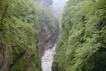 река Аргунь