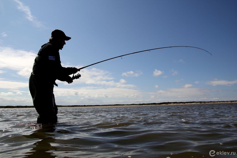 Обучение рыбной ловли: узнайте все секреты на практике!