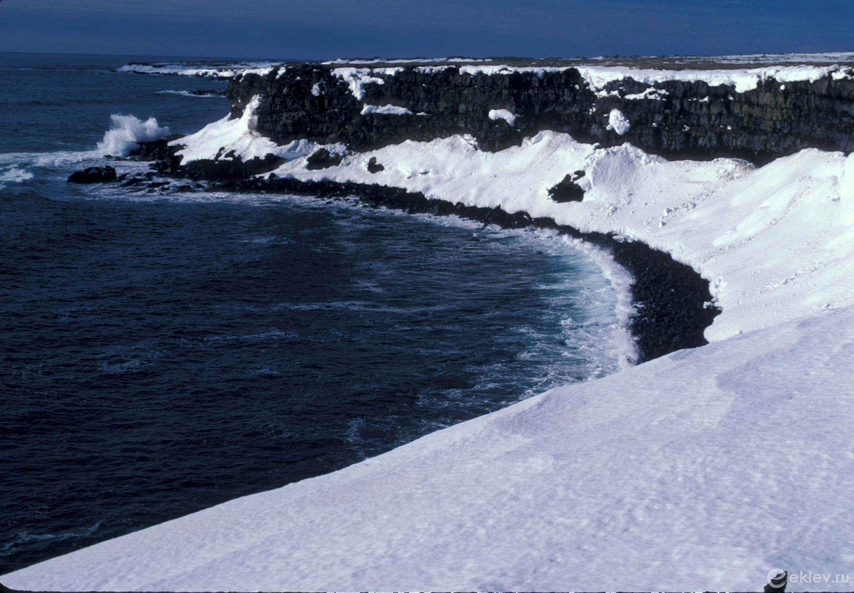 характеристики берингово море фотографии плащ поясе подчёркивает