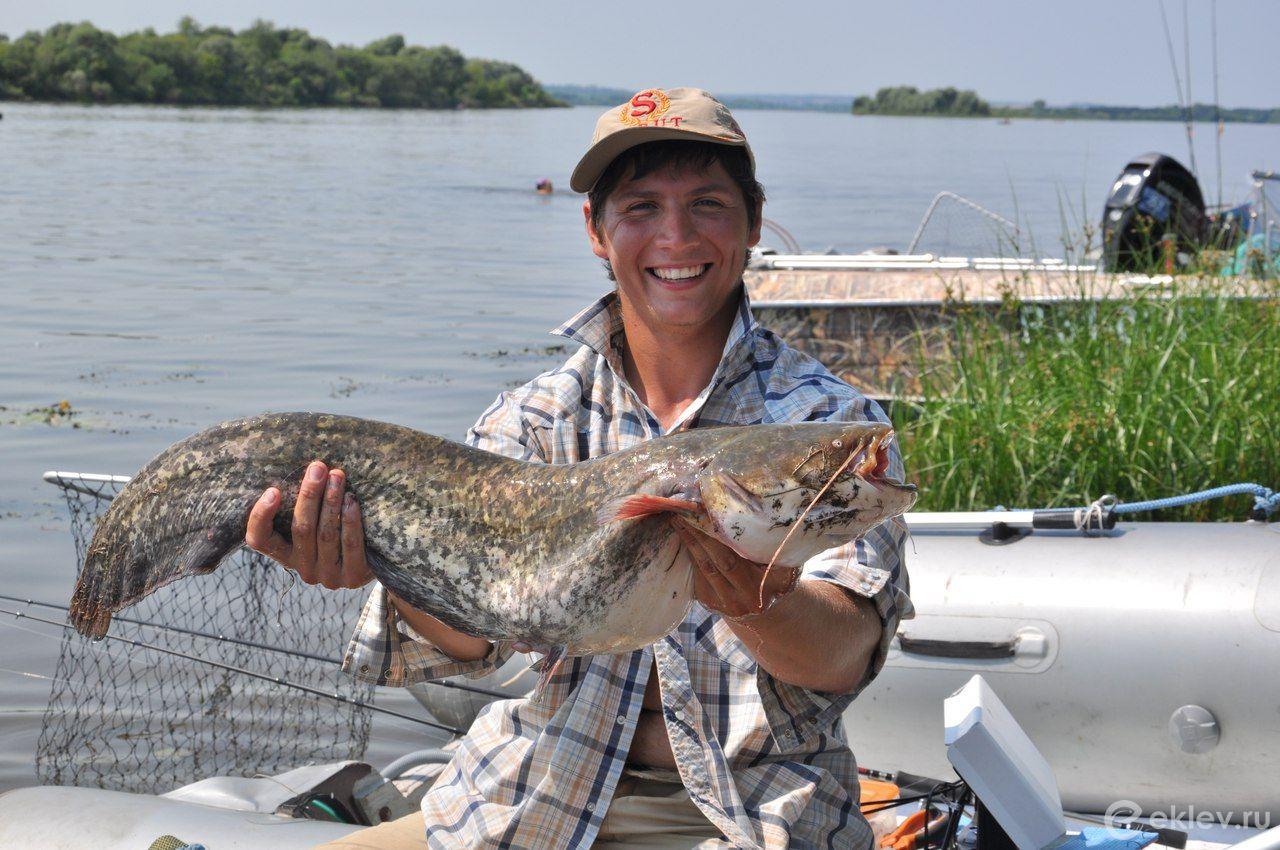 Форумы о рыбалке в нижегородской области