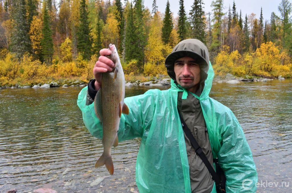 зимняя рыбалка свердловская