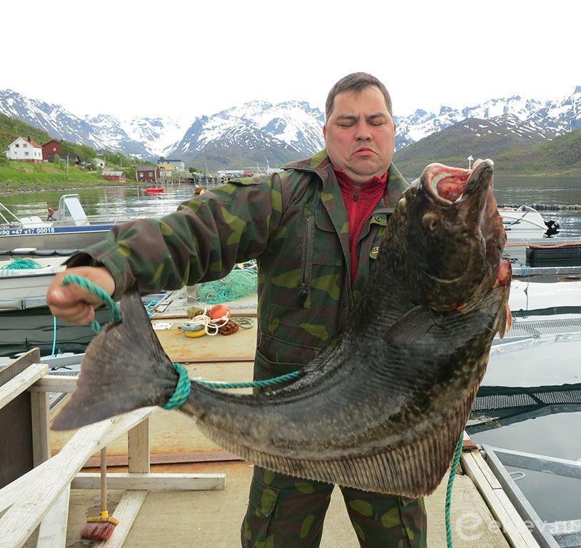 Подводная охота и рыбалка на Саратовском водохранилище